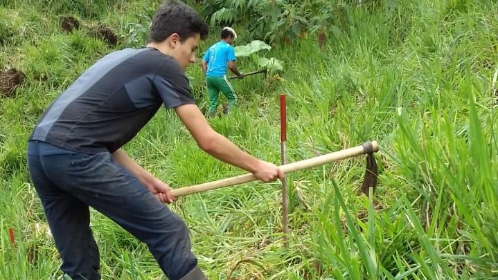 Arbeiter schlagen Pflanzkreise mit ca. 1 m Durchmesser